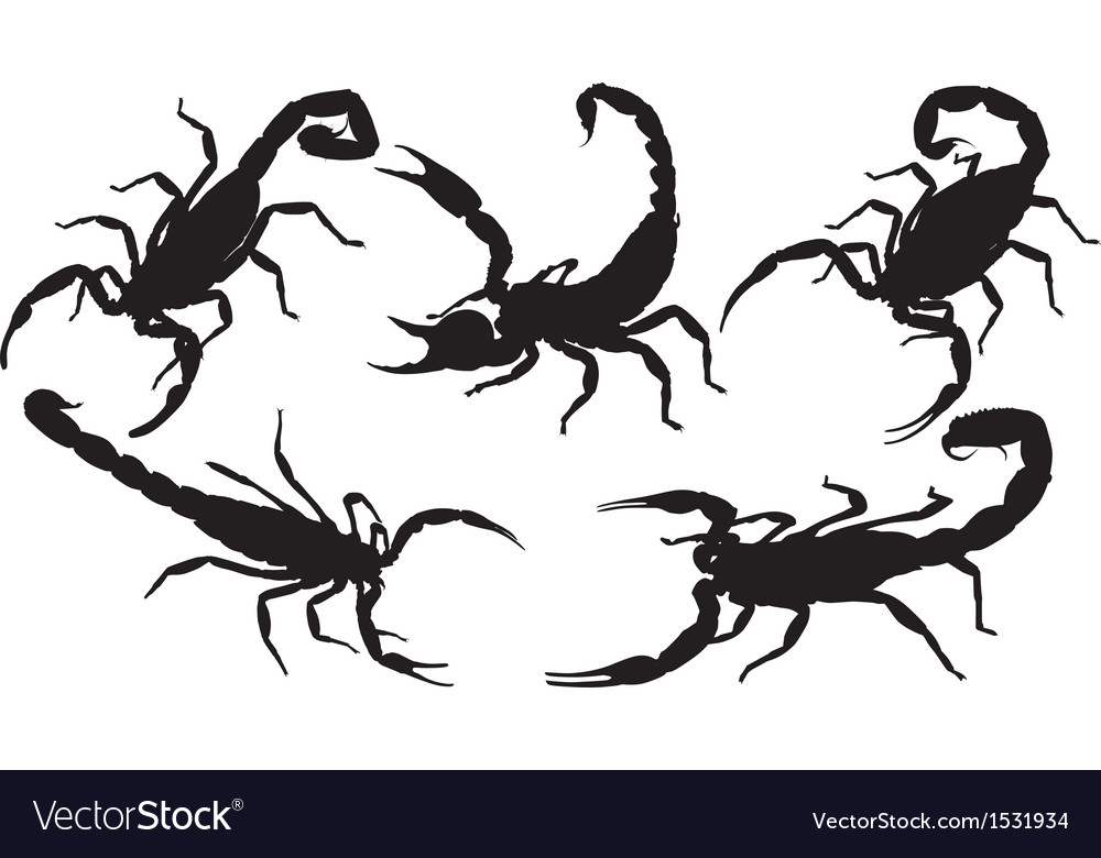 Scorpion silhouette clipart jpg Scorpion Silhouette jpg