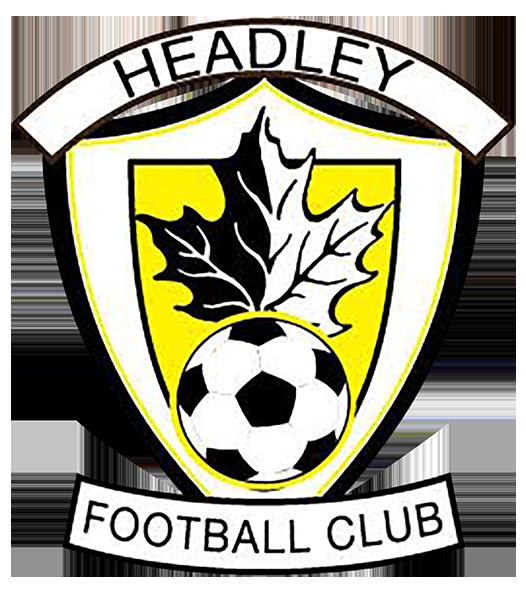 Scorpions football logo clipart graphic transparent stock Teams | Headley Youth Football Club graphic transparent stock