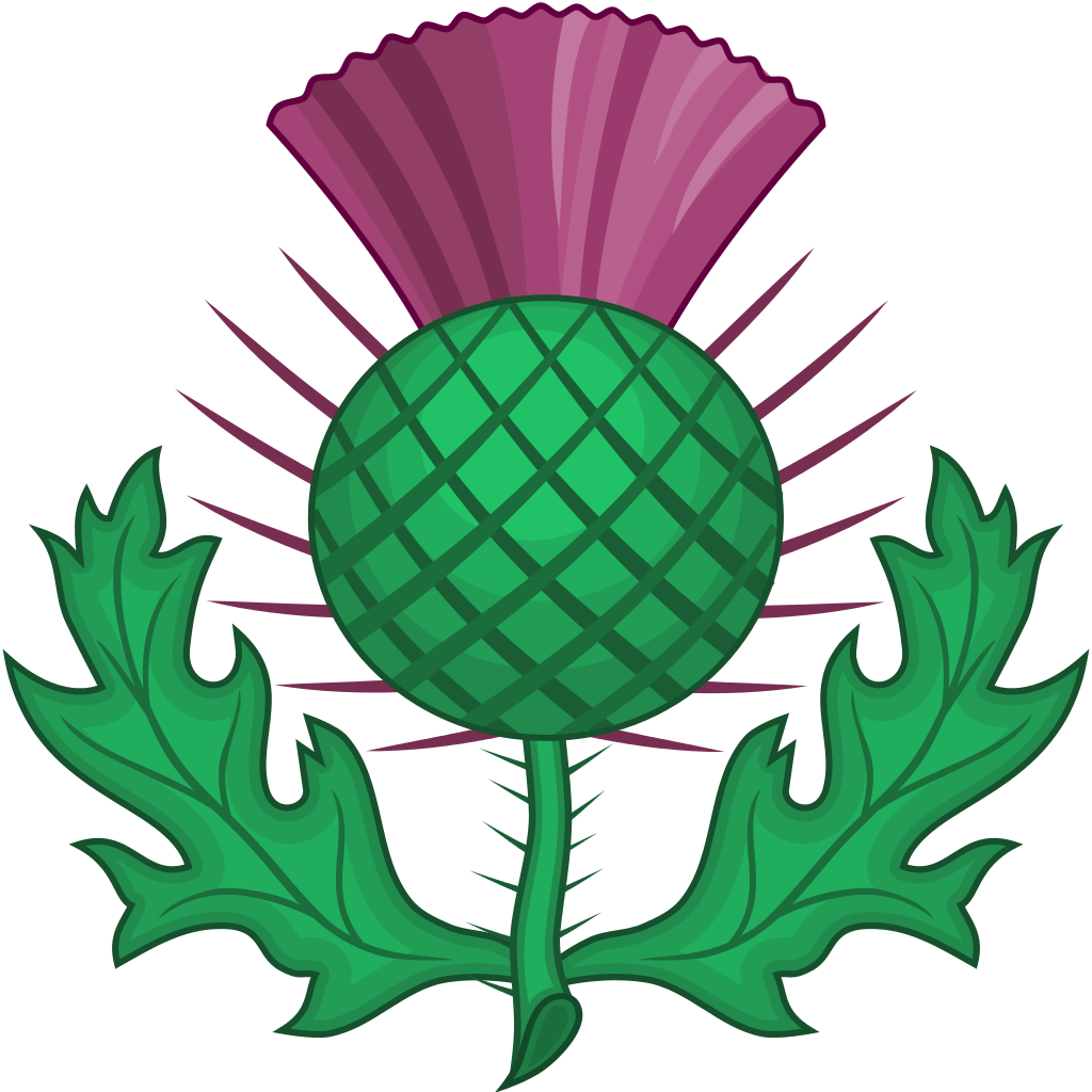 Scottish crown clipart png freeuse library Pin by Britany Turner on Wedding whatnots | Pinterest | Scottish ... png freeuse library
