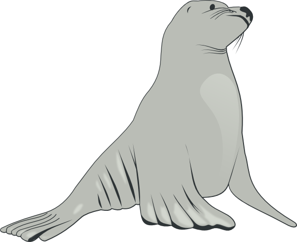 Seal lion swimming clipart banner freeuse library Sea Lion Clip Art at Clker.com - vector clip art online ... banner freeuse library