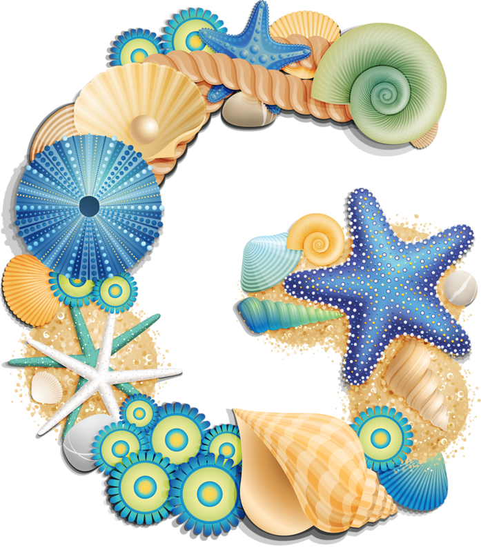 Sea shells star fishon beach clipart image library BEACH SHELLS | BEACH | Pinterest | Shell, Alphabet letters and Clip art image library