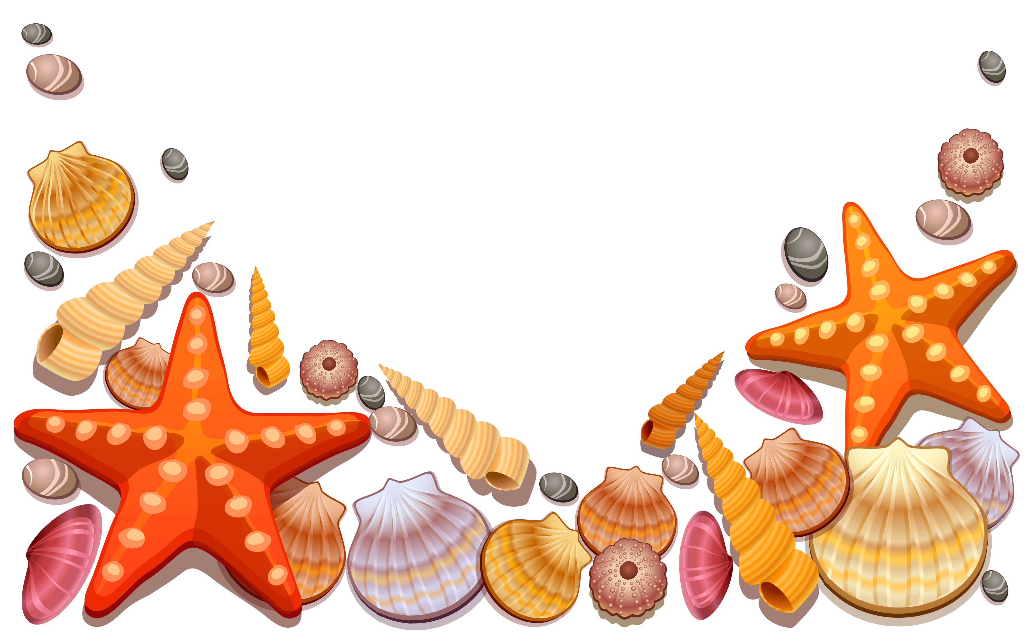 Sea shells star fishon beach clipart graphic black and white library Clipart Sea Shells at GetDrawings.com | Free for personal use ... graphic black and white library