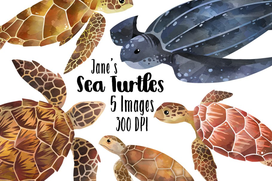 Sea turtle clipart wedding image freeuse download Watercolor Sea Turtles Clipart image freeuse download