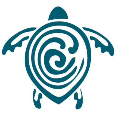 Sea turtle conservancy clipart banner transparent stock SeaTurtleConservancy (@conserveturtles)   Twitter banner transparent stock