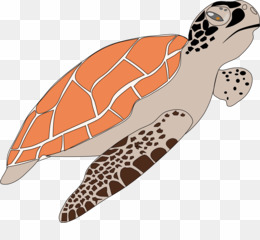 Sea turtle conservancy clipart clipart royalty free library Sea PNG & Sea Transparent Clipart Free Download - Rock And ... clipart royalty free library