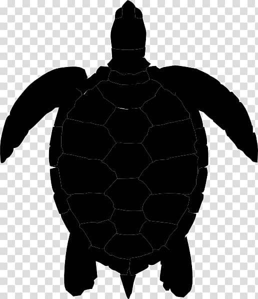 Sea turtle silhouette clipart clipart stock Sea turtle Silhouette , turtle transparent background PNG ... clipart stock
