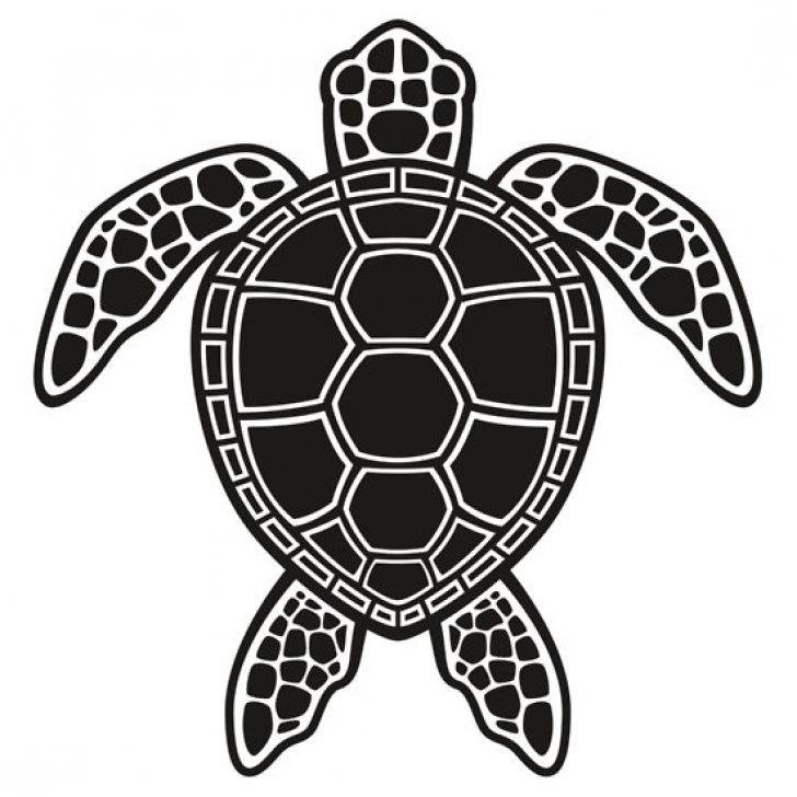 Sea turtle with a black and white clipart clip art free stock clipart sea turtle black and white | www ... clip art free stock