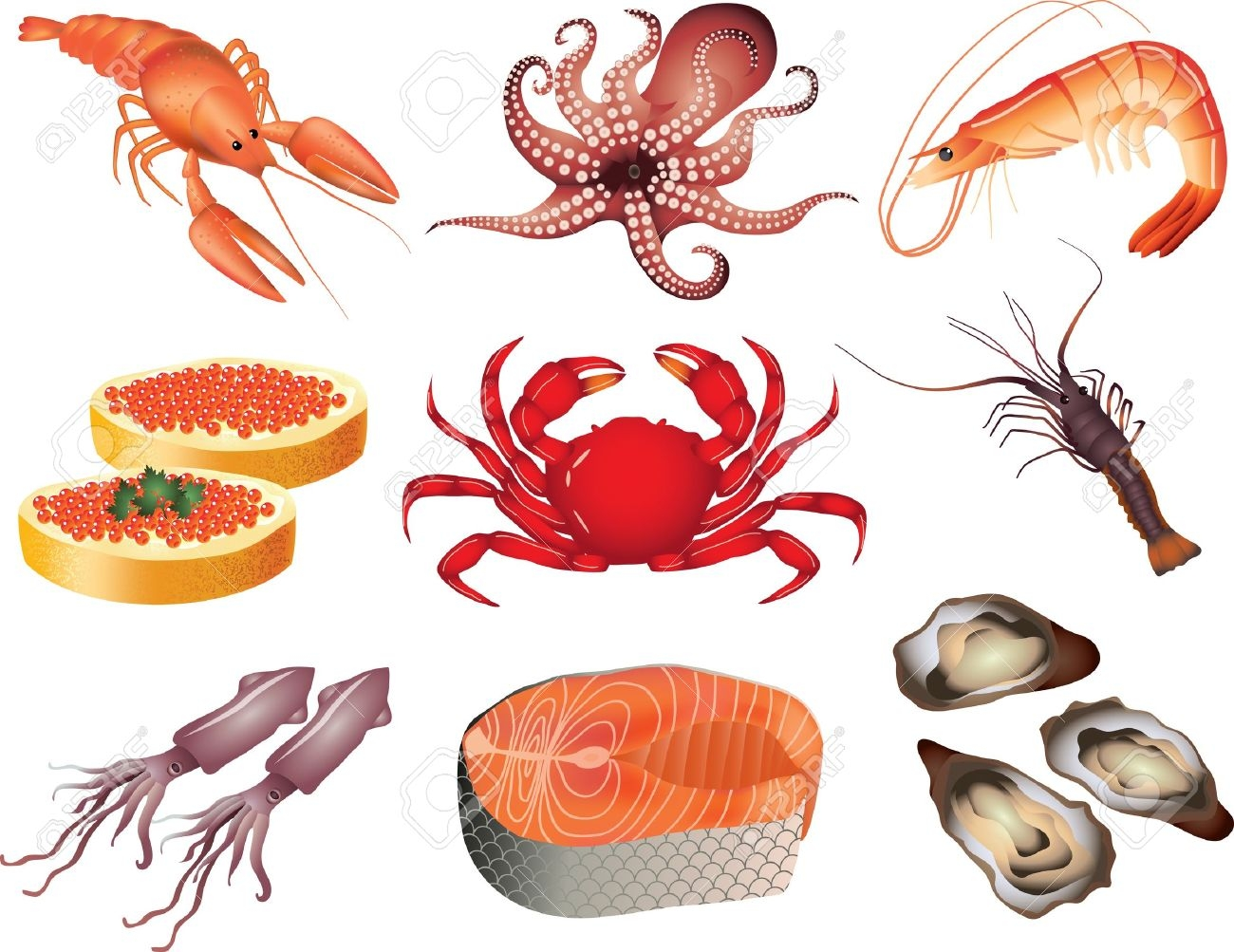 Seafood pictures clipart jpg stock Seafood clipart Elegant Seafood clipart vector Pencil and in ... jpg stock