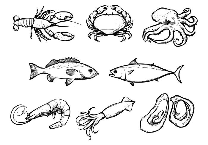 Seafood vector clipart banner royalty free stock Seafood Free Vector Art - (28,079 Free Downloads) banner royalty free stock