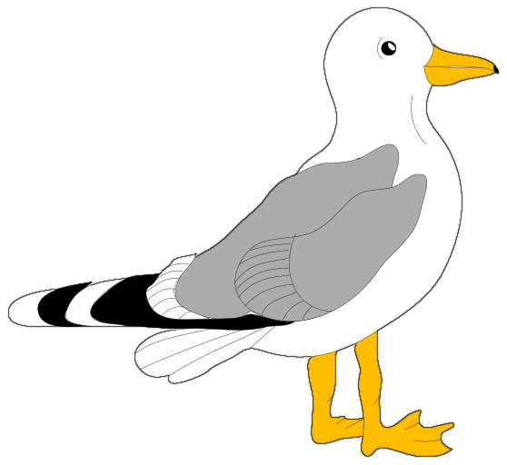 Seagull clipart free banner download Free Seagull Cliparts, Download Free Clip Art, Free Clip Art ... banner download