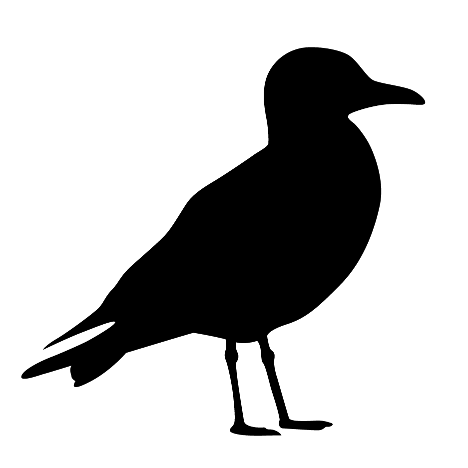 Seagull silhouette clipart picture library library Seagull Silhouette Stencil | Templates | Seagull craft ... picture library library