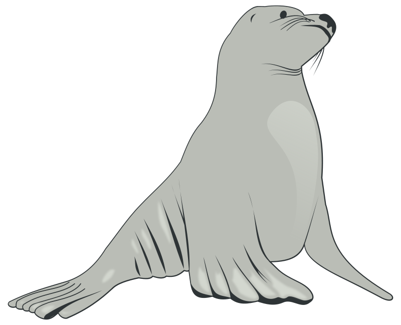 Sealion clipart banner library library Free Clipart: Sea Lion | valessiobrito banner library library