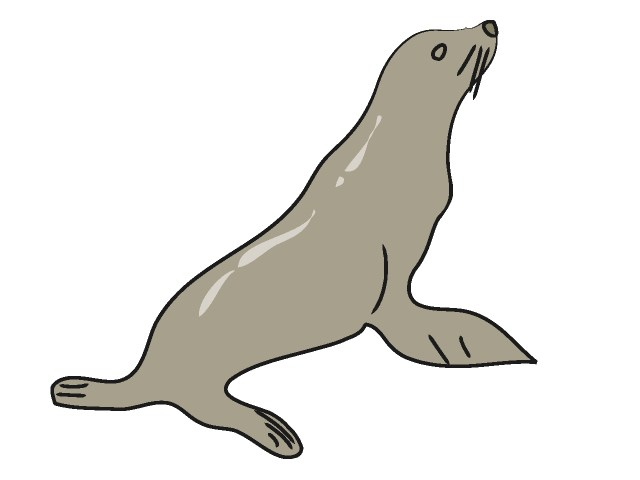 Sealion clipart png black and white stock Sealion clipart 2 » Clipart Portal png black and white stock