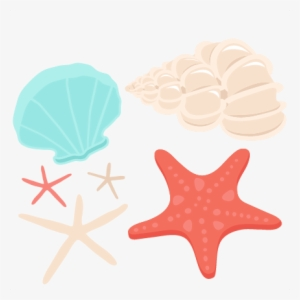Seashell clipart png free Seashell Clipart PNG, Transparent Seashell Clipart PNG Image ... free