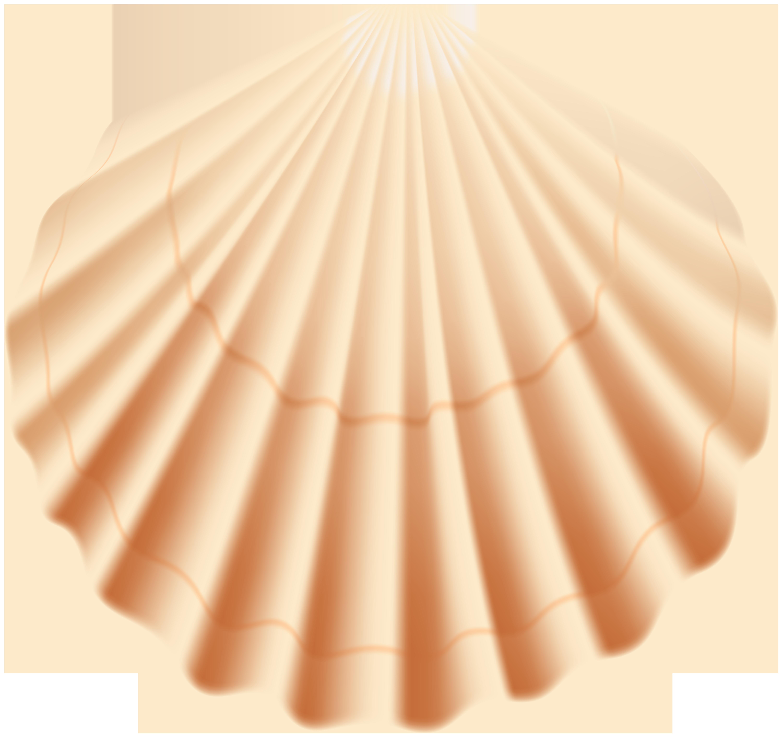 Seashell clipart transparent clip art transparent Seashell Transparent PNG Clip Art Image | Gallery ... clip art transparent