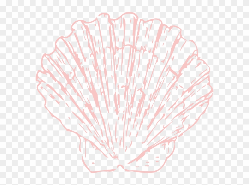 Seashell clipart transparent vector black and white Seashells Png Download Huge Freebie For - Pink Seashell ... vector black and white