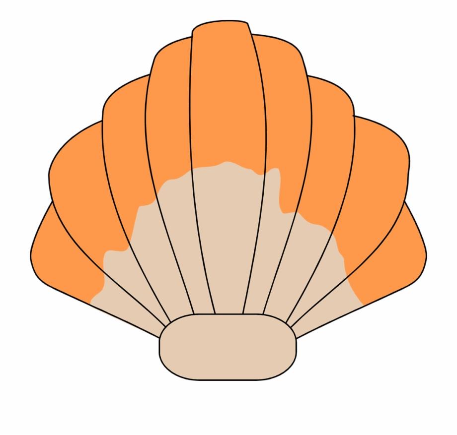 Seashell clipart transparent jpg transparent Sea Shell Free Stock Photo Illustration Of - Transparent ... jpg transparent