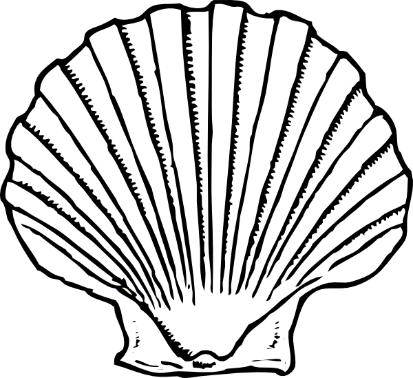 Shell heart clipart free Sea Shell Silhouette at GetDrawings.com   Free for personal use Sea ... free