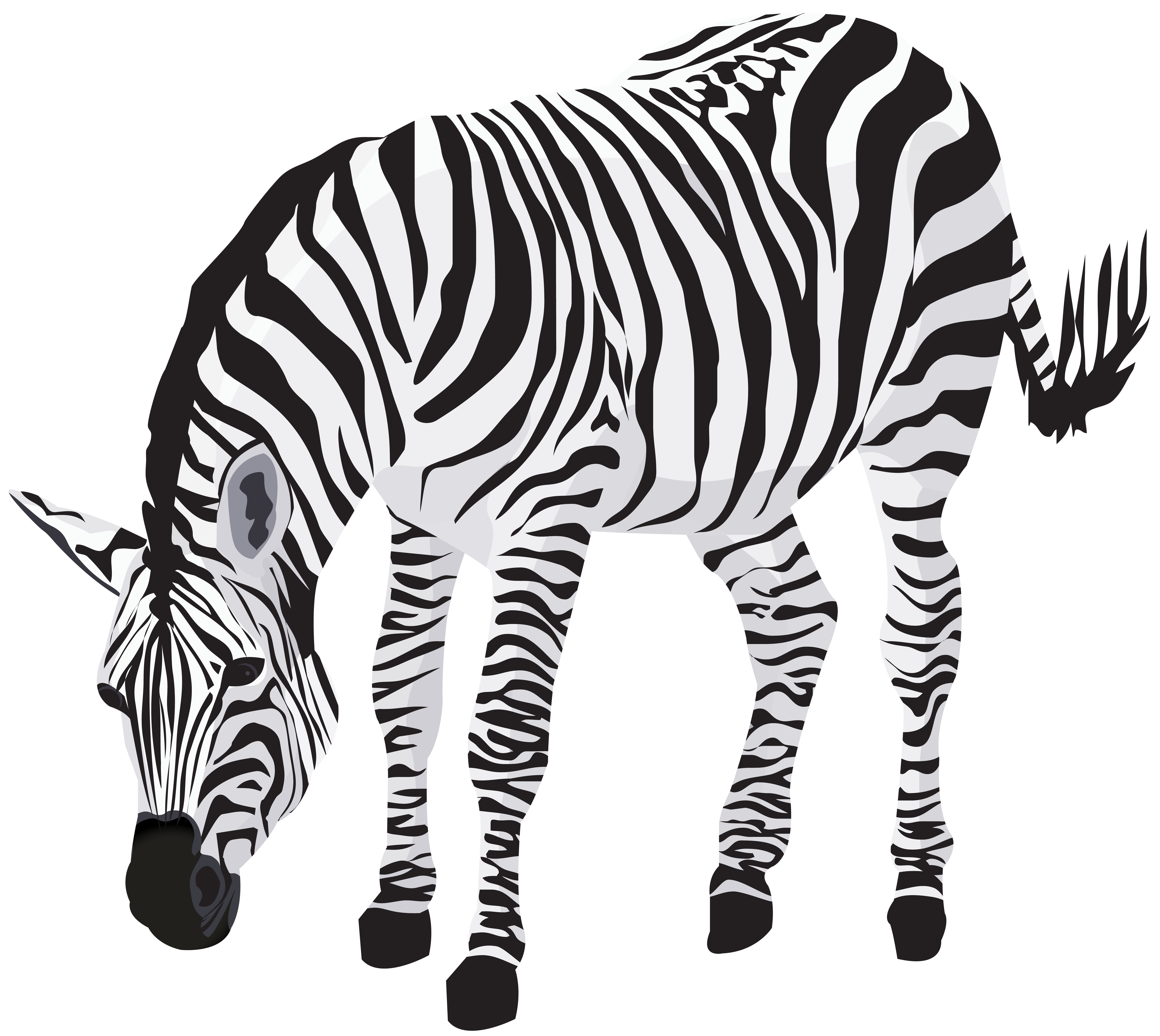 Seebea clipart png library stock Zebra Clipart Image | Gallery Yopriceville - High-Quality ... png library stock