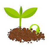 Seed growing clipart clip black and white stock Seed growing clipart 4 » Clipart Station clip black and white stock