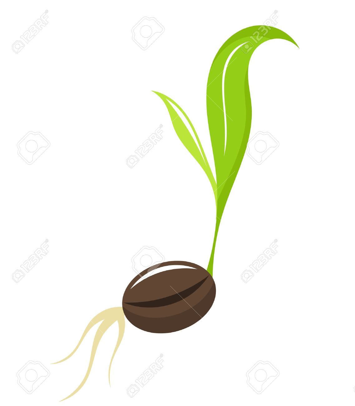 Seed growing clipart jpg free stock Seed Planting Cliparts   Free download best Seed Planting ... jpg free stock