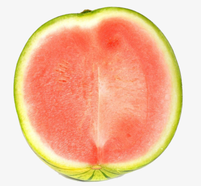 Seedless watermelon half clipart black and white graphic library stock Free PNG Images & Free Vectors Graphics PSD Files - DLPNG.com graphic library stock