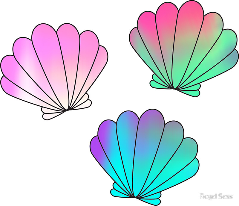 Seshell clipart picture freeuse stock Seashells Clipart | Free download best Seashells Clipart on ... picture freeuse stock