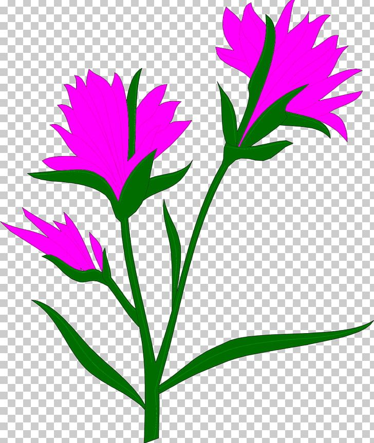 Self pollinating flower clipart graphic transparent download Flower Self-pollination Geitonogamy Pollen PNG, Clipart ... graphic transparent download