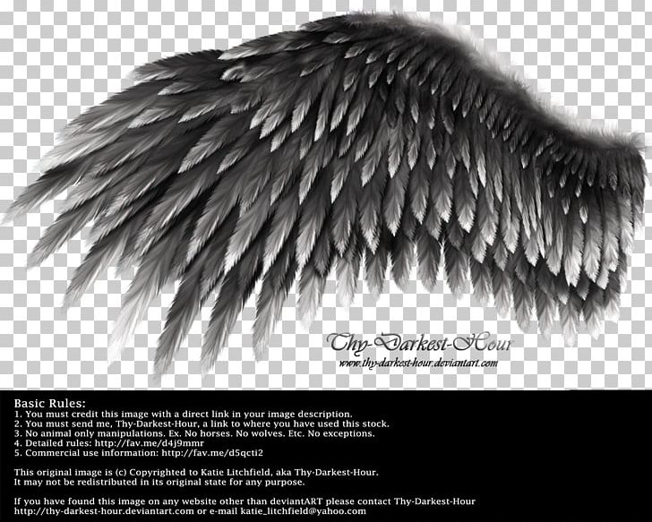 Send me a text clipart black and white clipart transparent Wing YouTube White PNG, Clipart, Black, Black And White ... clipart transparent