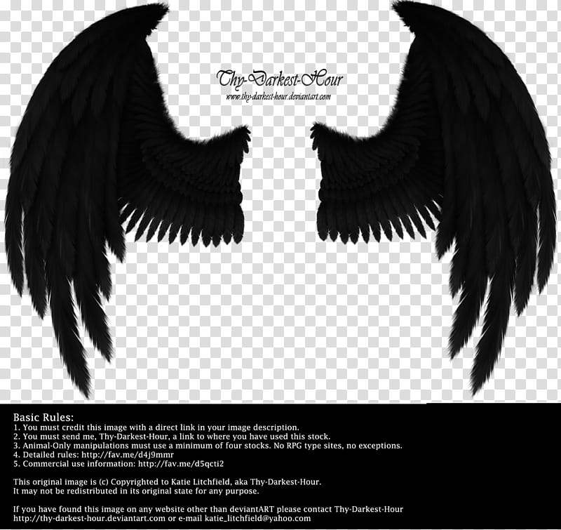 Send me a text clipart black and white svg free Winged Fantasy Black, Thy Darkest Hour text transparent ... svg free
