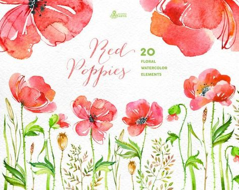 Sepa logo clipart clip art freeuse library Red Poppies: 20 Elements & arrangement. Handpainted ... clip art freeuse library