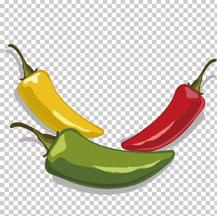 Serrano pepper clipart clipart transparent download Serrano Pepper Jalapexf1o Tabasco Pepper PNG, Clipart, Adobe ... clipart transparent download