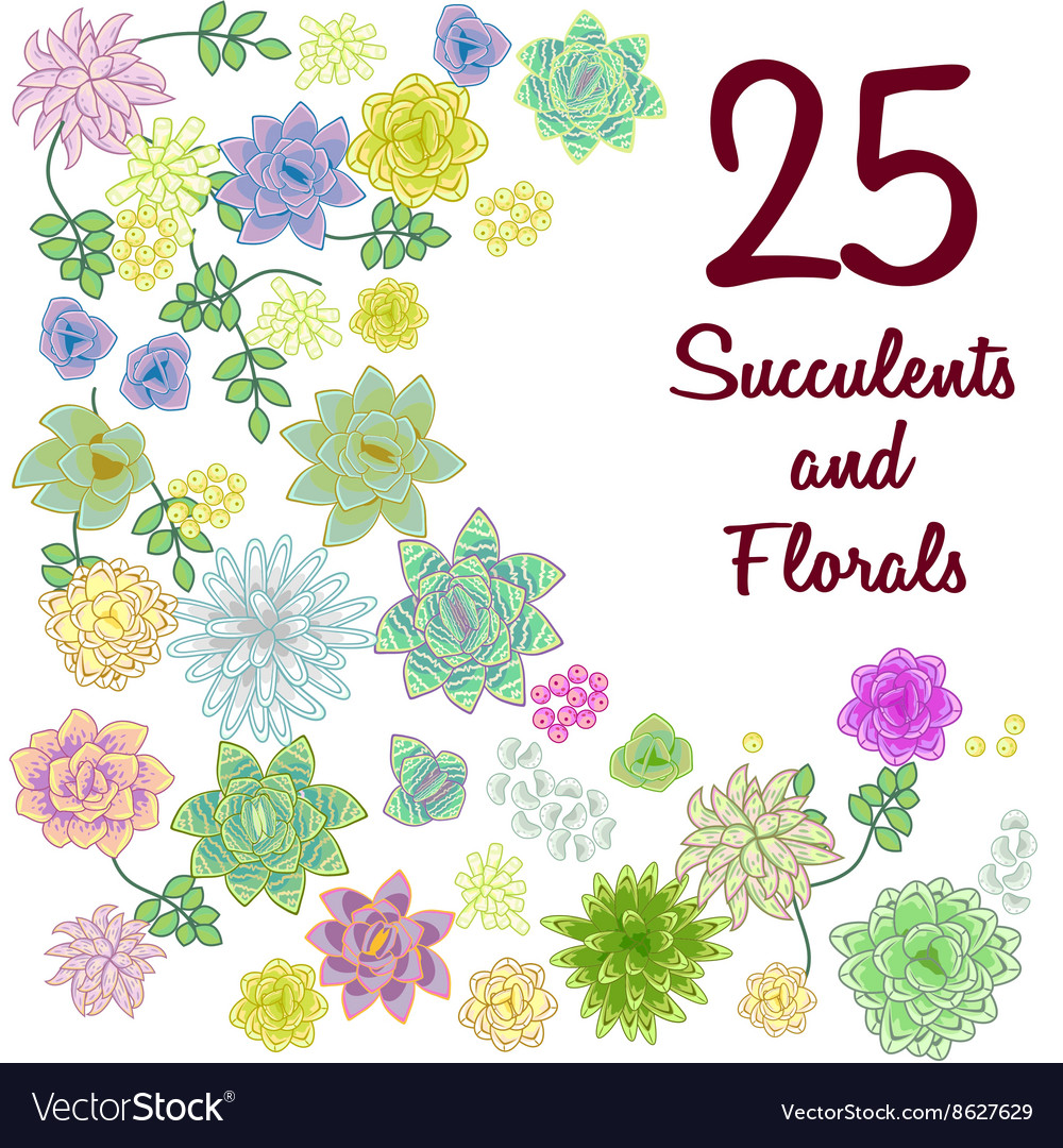 Set of flowers clipart clip freeuse stock Succulent garden clip art flowers element set clip freeuse stock