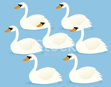 Seven swans a swimming clipart svg royalty free stock Seven Swans A Swimming premium clipart - ClipartLogo.com svg royalty free stock