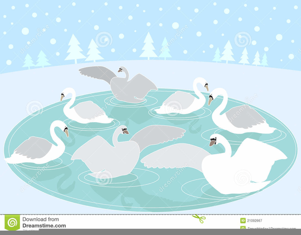 Seven swans a swimming clipart transparent download Seven swans a swimming clipart » Clipart Portal transparent download