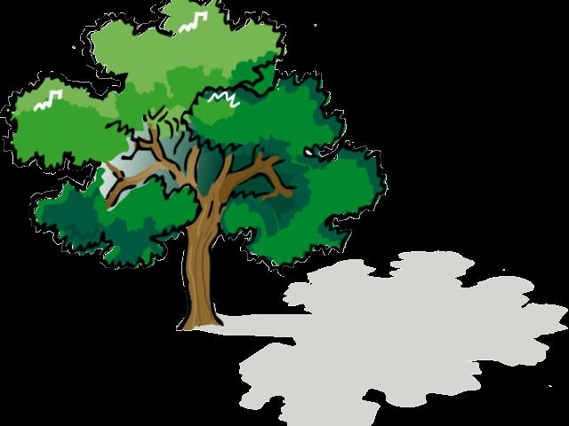 Shade tree clipart vector library stock Shade Tree Cliparts 1 - 588 X 599 | carwad.net vector library stock