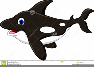 Shamu clipart vector freeuse download Shamu Clipart | Free Images at Clker.com - vector clip art ... vector freeuse download