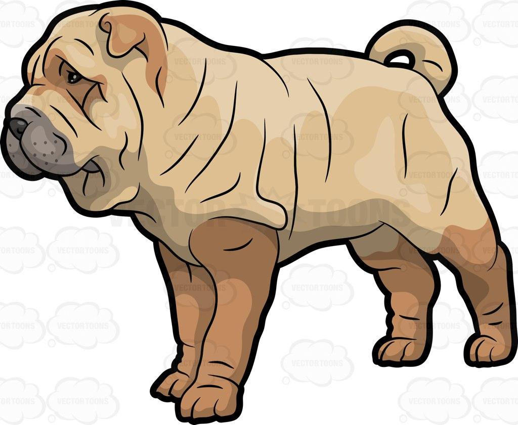 Shar clipart clipart freeuse A Shar Pei Pet Dog – Clipart By Vector T #268255 ... clipart freeuse