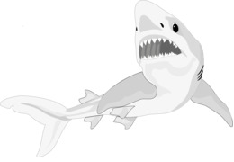 Shark cartilage clipart png free Shark Cartilage transparent png images & cliparts - About 1 ... png free