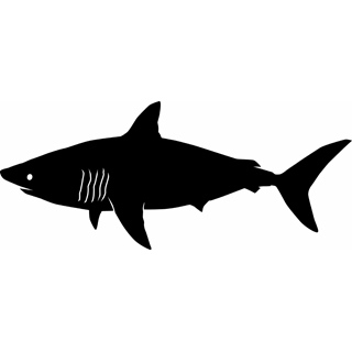 Shark clipart black svg royalty free stock Shark clip art images free clipart 5 – Gclipart.com svg royalty free stock