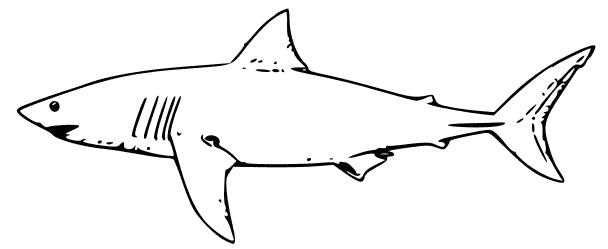 Great white shark clipart black and white jpg stock Free Black and White Shark Clipart | paper-ca:animals4 ... jpg stock