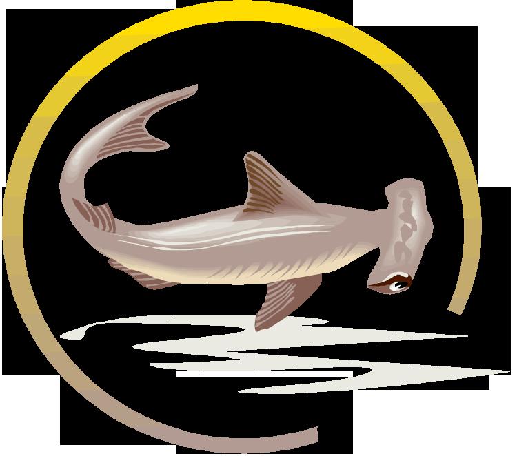 Shark playing baseball clipart jpg royalty free Free Shark Clipart jpg royalty free
