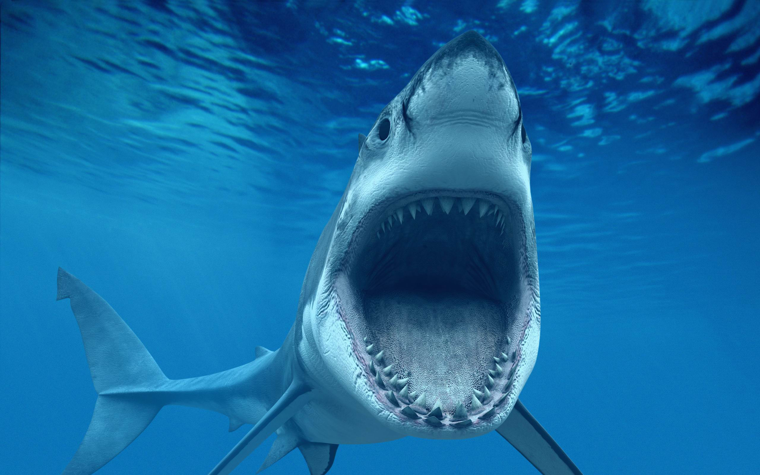 Shark tank clipart banner free library Shark Tank: Atlanta University Center Edition - Hypepotamus ... banner free library