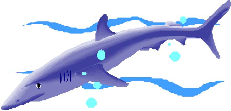Shark with towel and hat clipart picture library Free Shark Clipart picture library