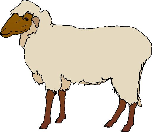 Sheep clipart images png library download Free Sheep Images, Download Free Clip Art, Free Clip Art on ... png library download