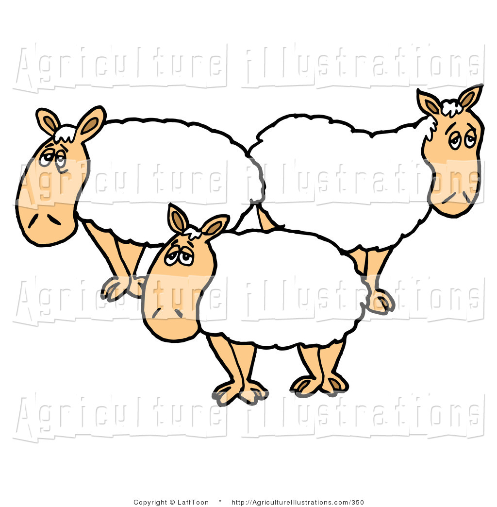 Sheep flock clipart vector download Agriculture Clipart of a Trio of White Sheep with Thick ... vector download