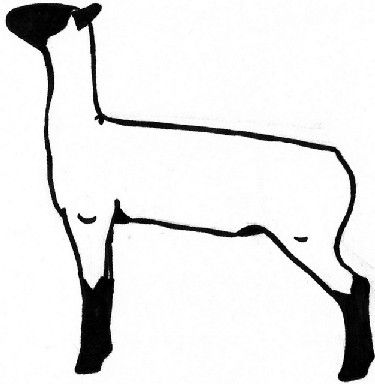 Sheep showing clipart jpg library download Show Lamb Clipart - Clipart Kid jpg library download