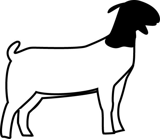 Sheep showing clipart picture black and white stock Goat and sheep clipart - ClipartFest picture black and white stock