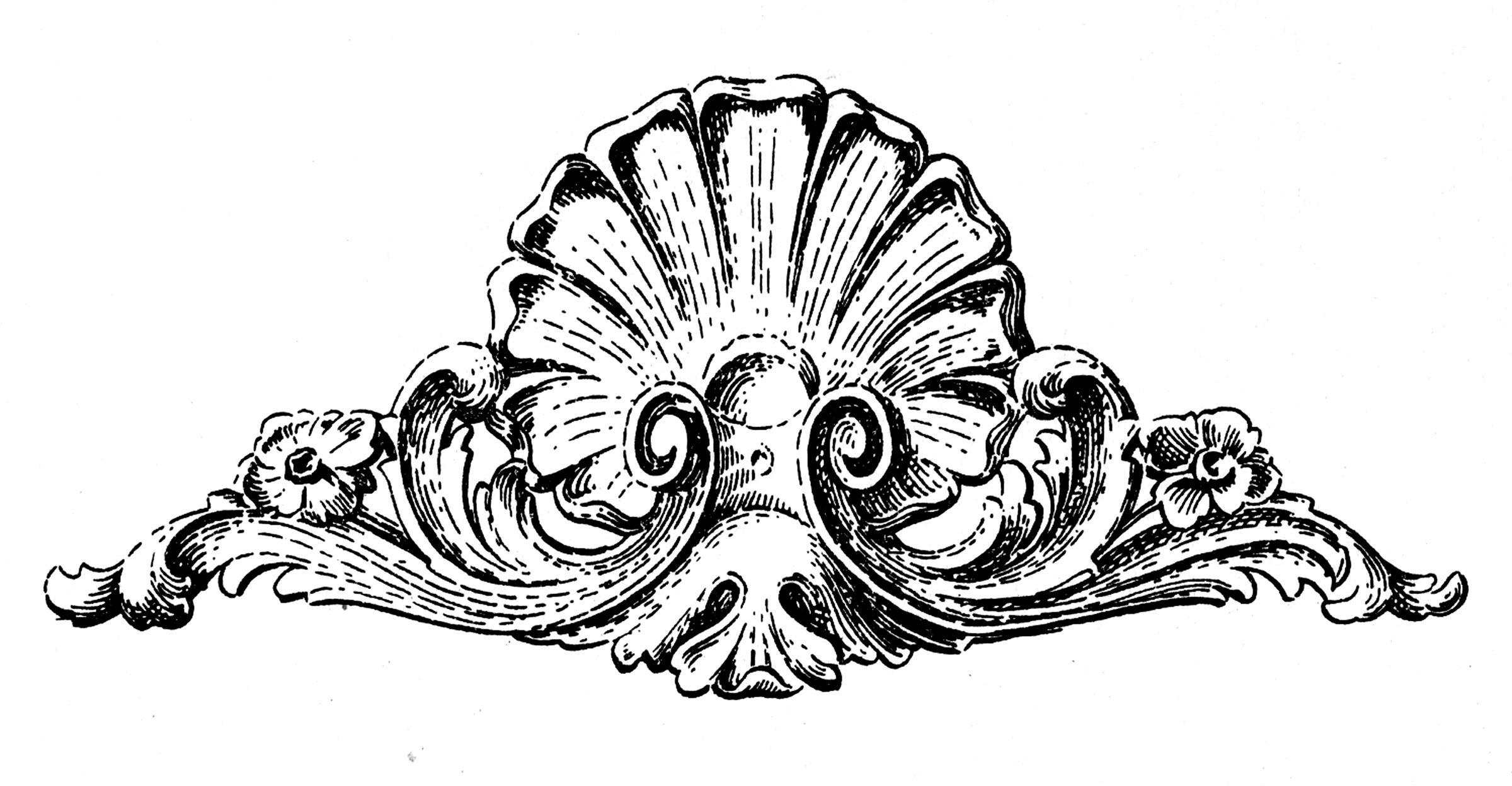 Shell pattern clipart victorian vector library download 10 Ornamental Shell Clipart Images - The Graphics Fairy vector library download