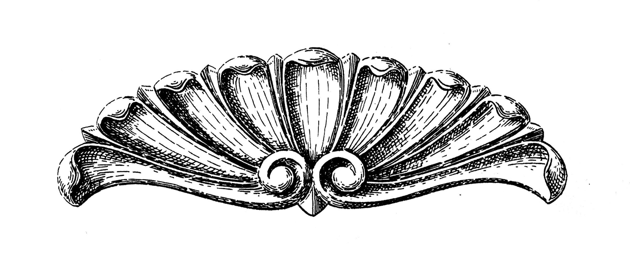 Shell pattern clipart victorian vector black and white stock 10 Ornamental Shell Clipart Images - The Graphics Fairy vector black and white stock